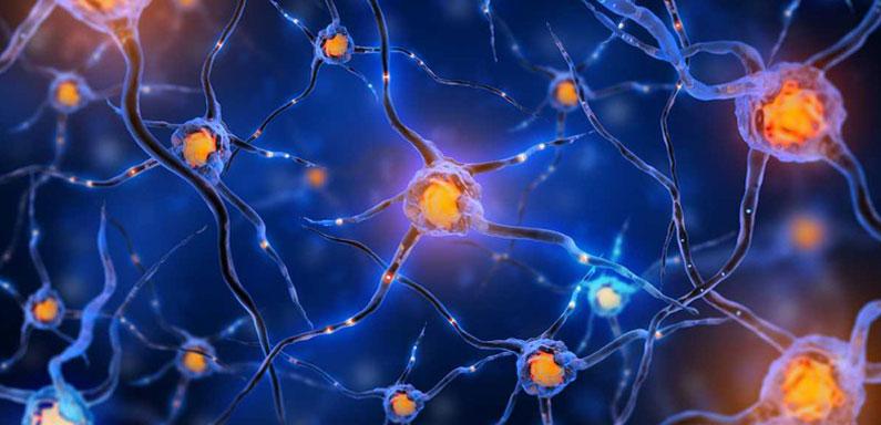 efectos en el cerebro consumo cocaina