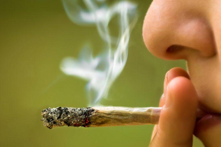 El consumo precoz de marihuana, los efectos cerebrales y las repercusiones académicas
