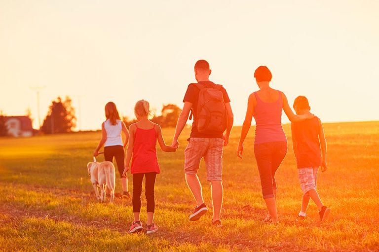 El impacto de la adicción en la familia