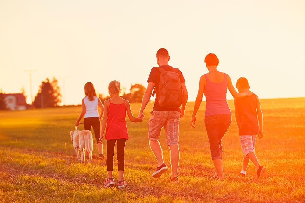 Impacto de la adicción en la familia