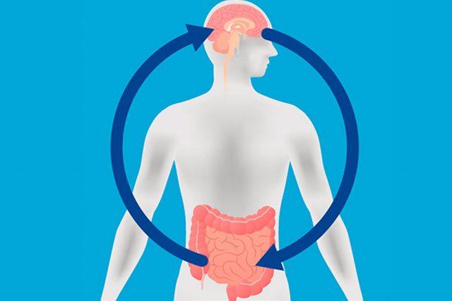 ¿Qué es el eje intestino-cerebro y cómo puede afectar a la salud mental?