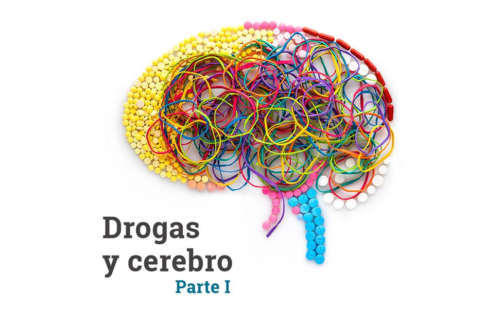 Las drogas interfieren en el cerebro en la forma en que las neuronas envían, reciben y procesan las señales que transmiten los neurotransmisores.